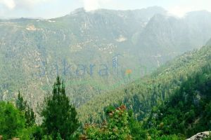 Lands For Sale Yahshoush, keserwan, Mount Lebanon, Lebanon - 14569