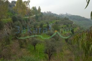 Lands For Sale Kfar Hata, El Koura, North, Lebanon - 14829
