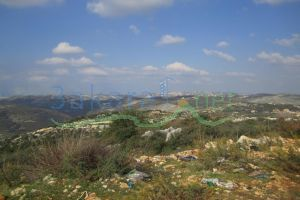 Lands For Sale Al Majdal, El Koura, North, Lebanon - 15795