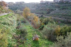 Lands For Sale Joun, Ech Chouf, Mount Lebanon, Lebanon - 678