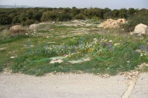 Lands For Sale Batroun, El Batroun, North, Lebanon - 723
