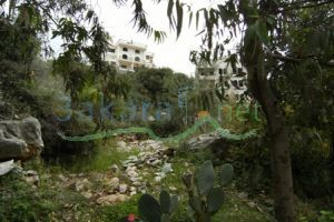 Lands For Sale Jeita, keserwan, Mount Lebanon, Lebanon - 874