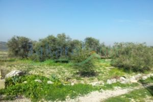 Lands For Sale Mrah Al Hbass, Jezzine, South, Lebanon - 9228