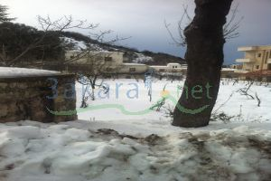 Lands For Sale Aweineh, Jbeil, Mount Lebanon, Lebanon - 10621
