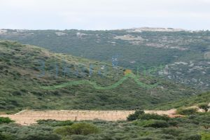 Farm For Sale Batroun, El Batroun, North, Lebanon - 4368