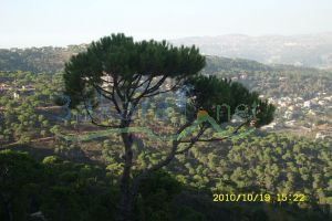 Building For Sale Al Khenshara, El Meten, Mount Lebanon, Lebanon - 4746