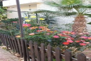 Villas For Sale Al Jiyeh, Ech Chouf, Mount Lebanon, Lebanon - 14817