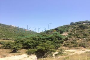 Lands For Sale Sfar, Jbeil, Mount Lebanon, Lebanon - 14793