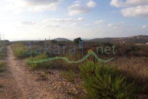 Lands For Sale Al Bayad, Sour, South, Lebanon - 14976