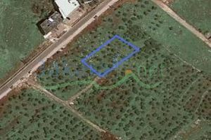 Lands For Sale Btouratij, El Koura, North, Lebanon - 2923