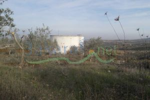Lands For Sale Al Nakoura, Sour, South, Lebanon - 15171