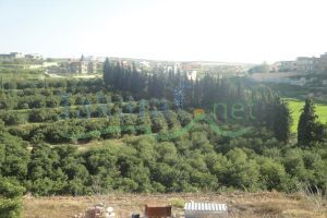 Palace For Sale Kawthariyet Al Sayad, Saida, South, Lebanon - 2522
