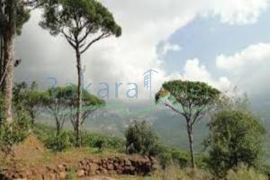 Lands For Sale Ras Al Harf, Baabda, Mount Lebanon, Lebanon - 14830