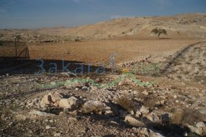 Lands For Sale Jordan - 8819