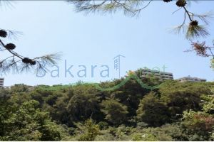 Lands For Sale Bshamoun, Aley, Mount Lebanon, Lebanon - 14997