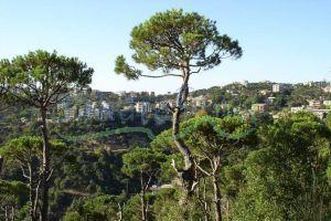 Lands For Sale Baabdat, El Meten, Mount Lebanon, Lebanon - 6913
