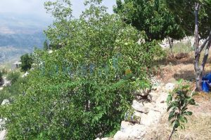 Lands For Sale Tarshish, Baabda, Mount Lebanon, Lebanon - 9767