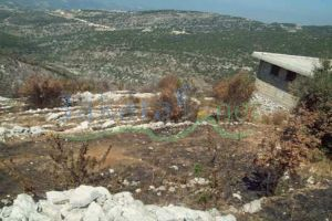 Farm For Sale Al Alali, El Batroun, North, Lebanon - 4086