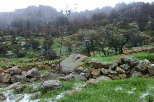 Lands For Sale Hrajel, keserwan, Mount Lebanon, Lebanon - 7853