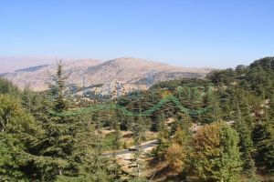 Lands For Sale Joun, Ech Chouf, Mount Lebanon, Lebanon - 11016