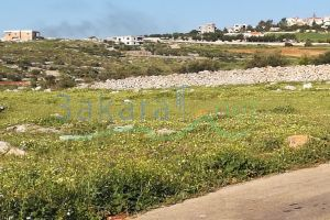 Lands For Sale Shakra, Bent Jbeil, Nabatieh, Lebanon - 15442