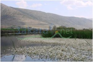 Lands For Sale Kfarzabad, Zahle, Bekaa, Lebanon - 14752
