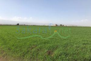 Lands For Sale Majdaloun, Baalbek, Bekaa, Lebanon - 15735