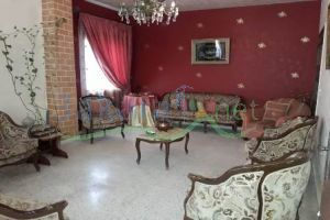 Apartments For Sale Saida, Saida, South, Lebanon - 14863