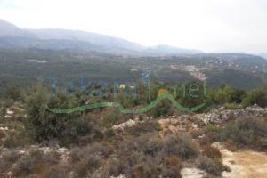 Lands For Sale Ain W Zein, Ech Chouf, Mount Lebanon, Lebanon - 14950