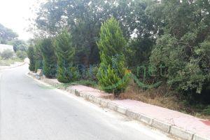 Lands For Sale Al Nammoura, keserwan, Mount Lebanon, Lebanon - 15780