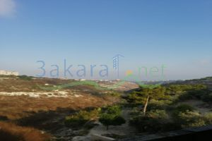 Lands For Sale Ankoun, Saida, South, Lebanon - 15285
