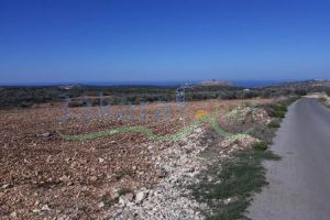 Lands For Sale Tayr Harfa, Sour, South, Lebanon - 14971