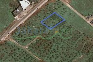 Lands For Sale Btouratij, El Koura, North, Lebanon - 2924
