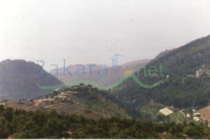 House For Sale Jouret Tourmos, keserwan, Mount Lebanon, Lebanon - 5038